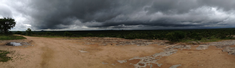 Approaching thunderstorm in the South African bush