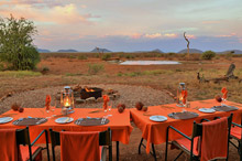 African tours and safaris to Madikwe Game Reserve